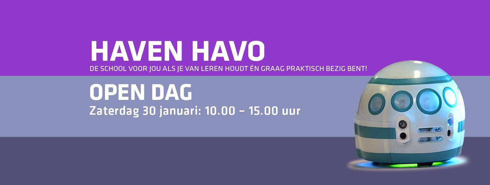Haven Havo logo