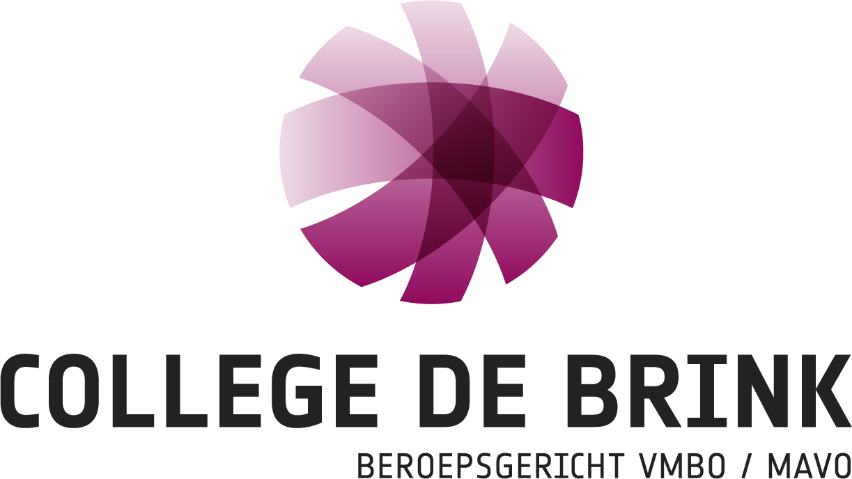 College De Brink logo